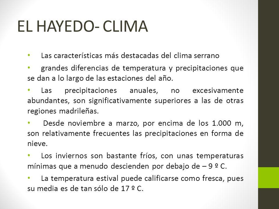 EL HAYEDO- CLIMA Las características más destacadas del clima serrano