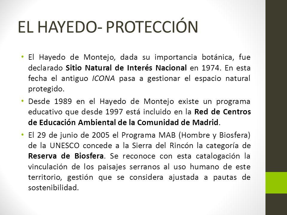 EL HAYEDO- PROTECCIÓN