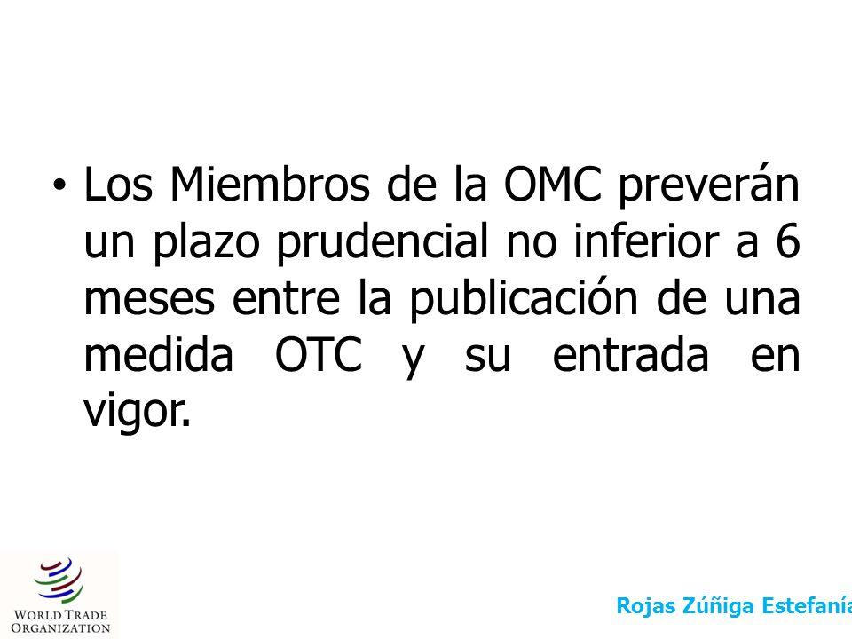 Los Miembros de la OMC preverán un plazo prudencial no inferior a 6 meses entre la publicación de una medida OTC y su entrada en vigor.