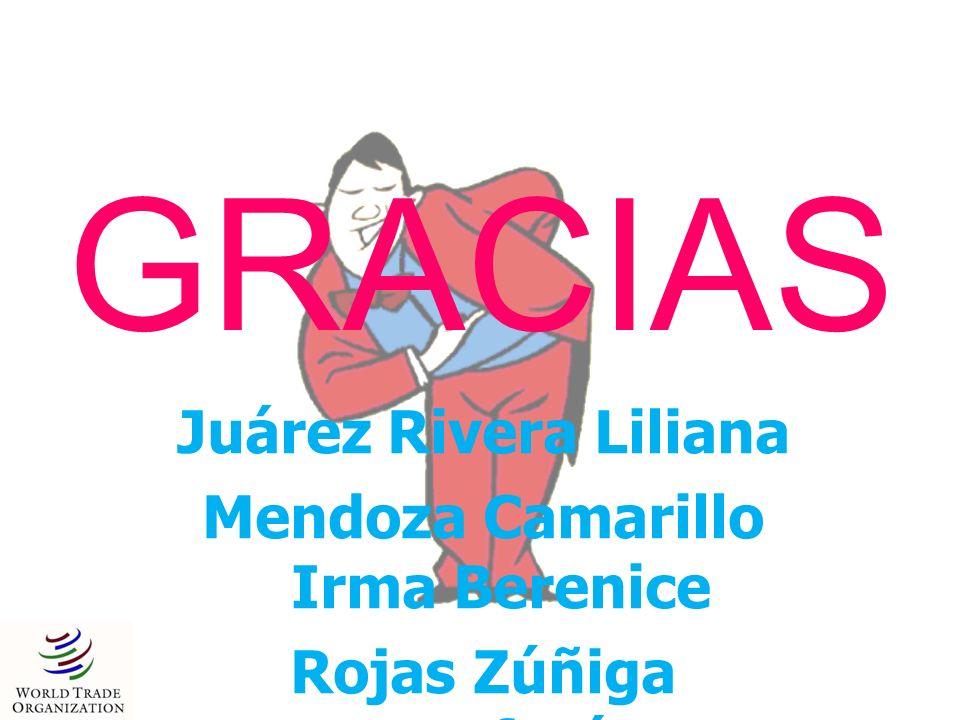 Mendoza Camarillo Irma Berenice Rojas Zúñiga Estefanía