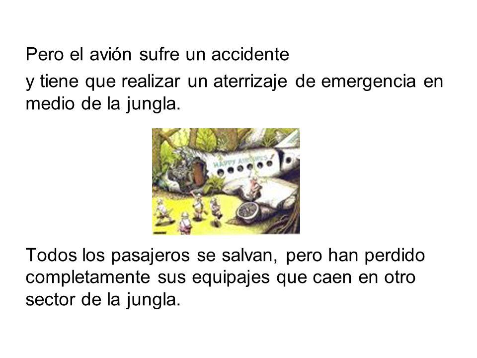 Pero el avión sufre un accidente