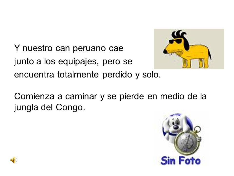 Y nuestro can peruano cae