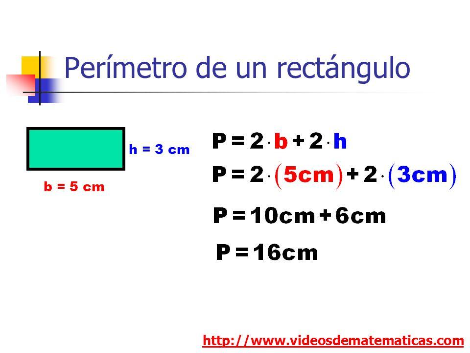 Perímetro de un rectángulo