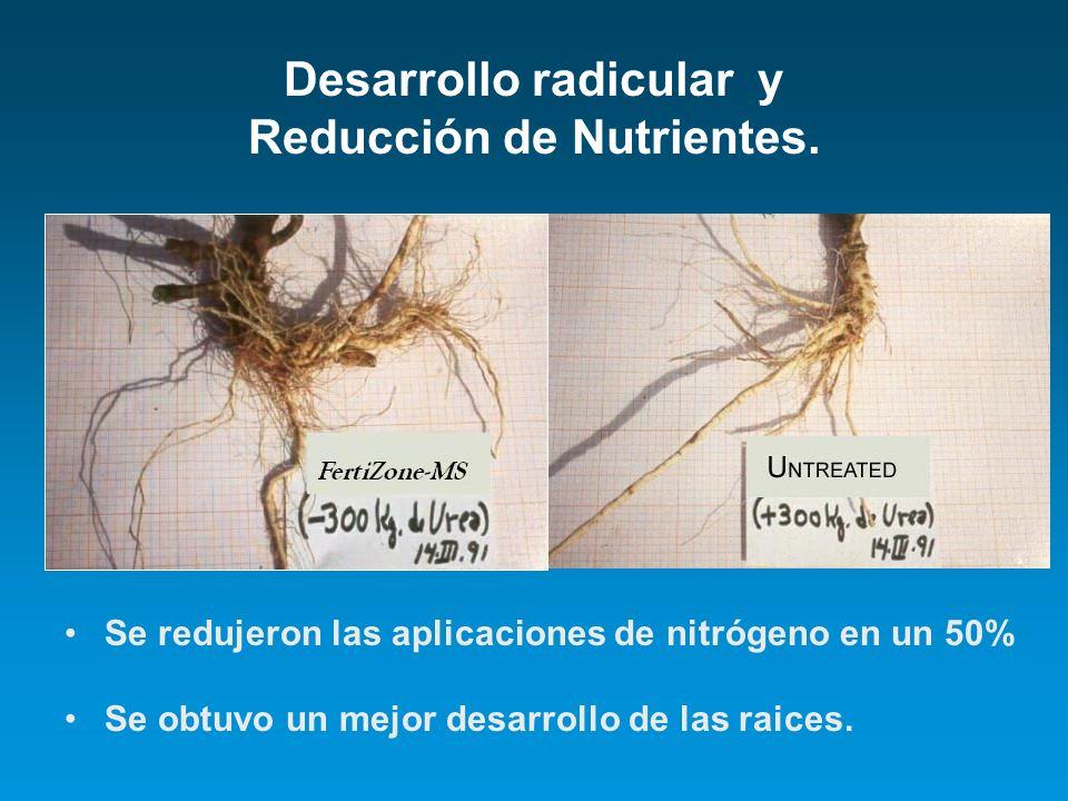 Desarrollo radicular y Reducción de Nutrientes.