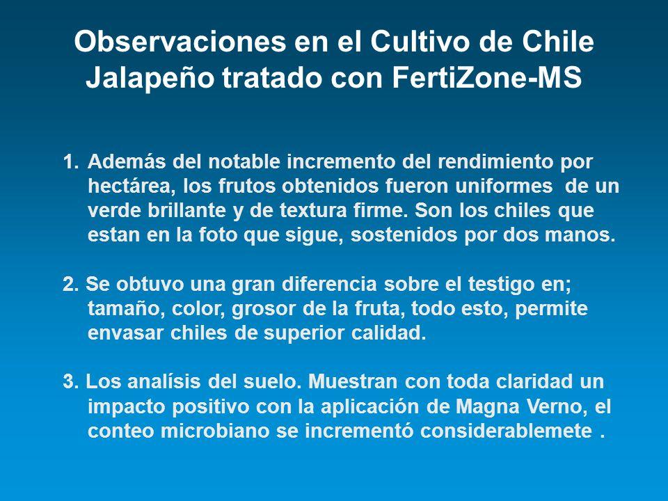 Observaciones en el Cultivo de Chile Jalapeño tratado con FertiZone-MS