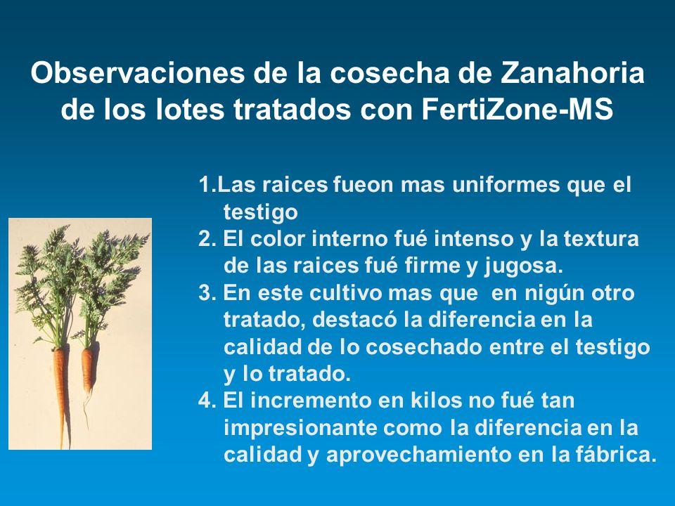 Observaciones de la cosecha de Zanahoria de los lotes tratados con FertiZone-MS