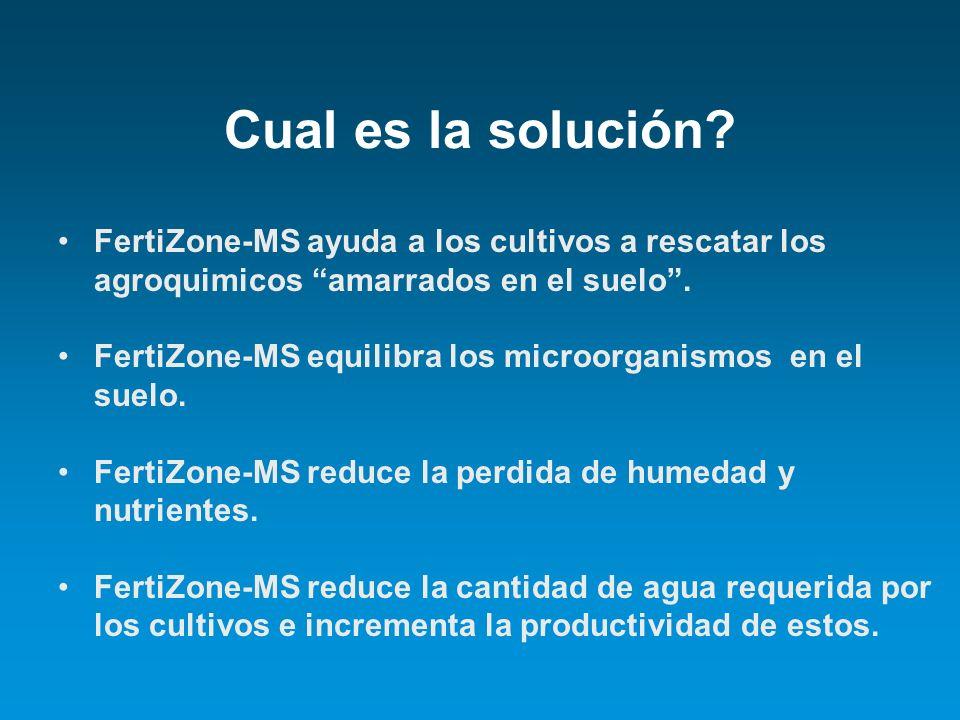 Cual es la solución FertiZone-MS ayuda a los cultivos a rescatar los agroquimicos amarrados en el suelo .