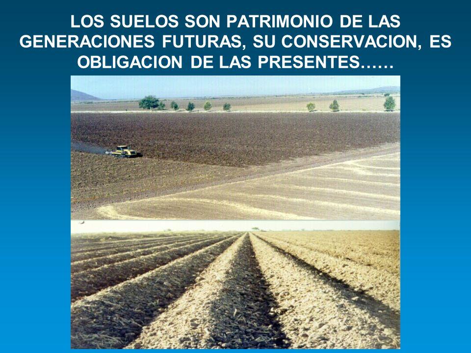LOS SUELOS SON PATRIMONIO DE LAS GENERACIONES FUTURAS, SU CONSERVACION, ES OBLIGACION DE LAS PRESENTES……