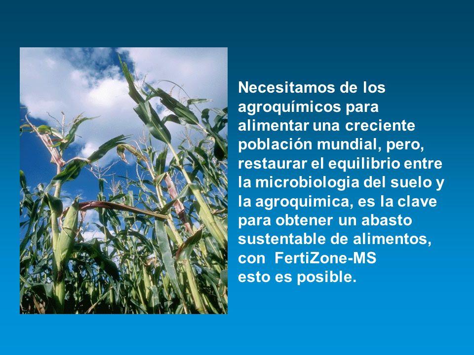 Necesitamos de los agroquímicos para alimentar una creciente población mundial, pero, restaurar el equilibrio entre la microbiologia del suelo y la agroquimica, es la clave para obtener un abasto sustentable de alimentos, con FertiZone-MS esto es posible.