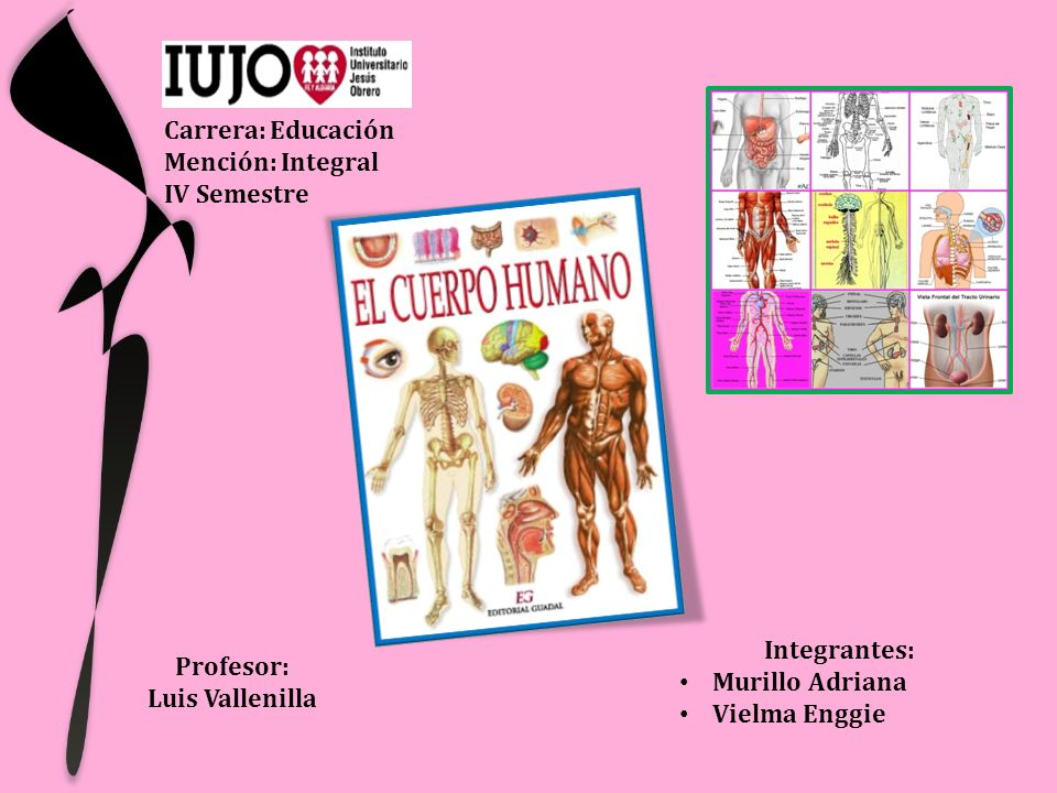 Carrera: Educación Mención: Integral. IV Semestre. Integrantes: Murillo Adriana. Vielma Enggie.