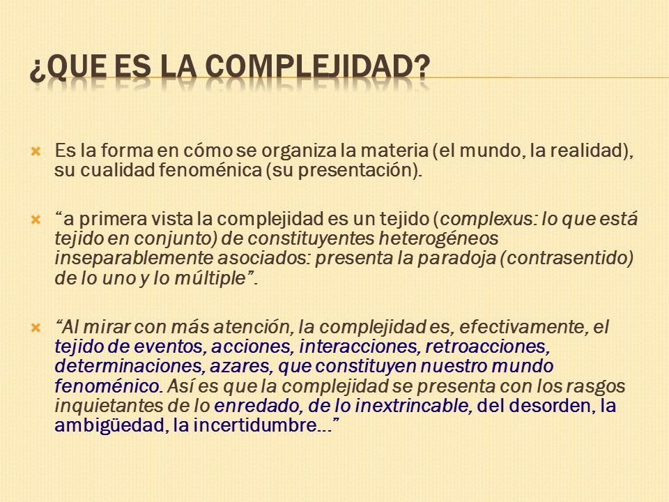 ¿Que es la complejidad Es la forma en cómo se organiza la materia (el mundo, la realidad), su cualidad fenoménica (su presentación).