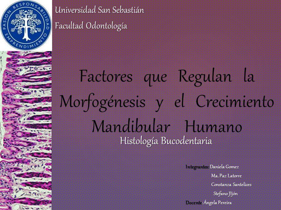 Histología Bucodentaria