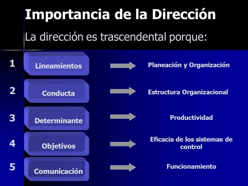 Importancia de la Dirección