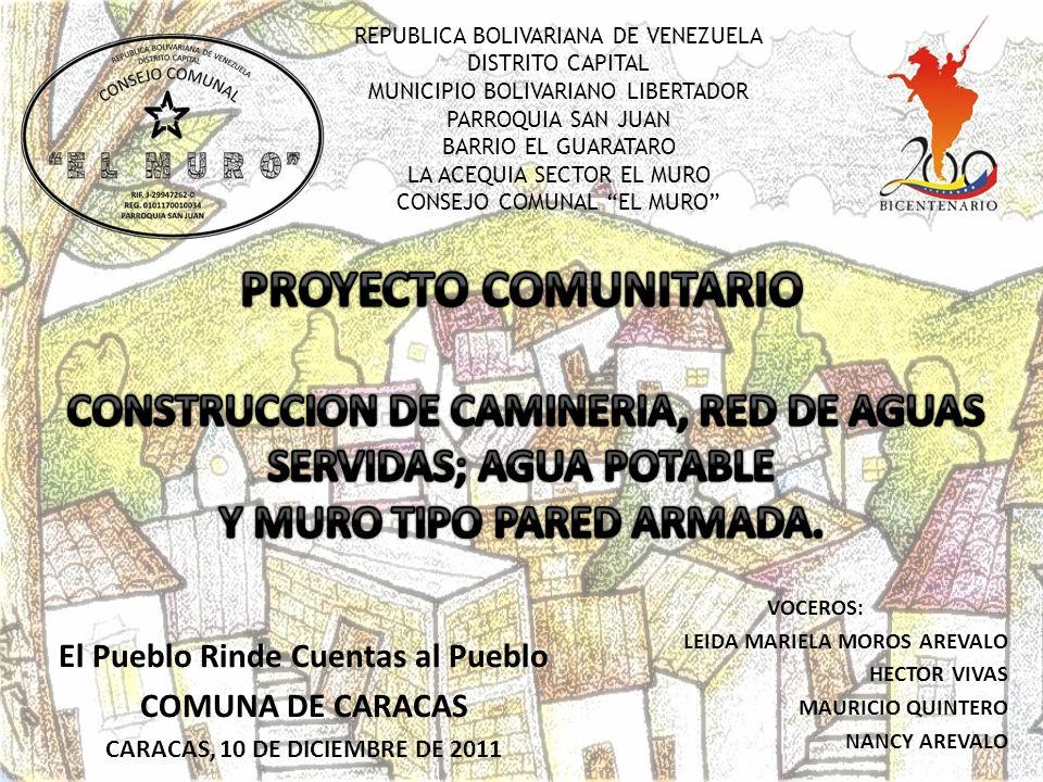 PROYECTO COMUNITARIO Y MURO TIPO PARED ARMADA.