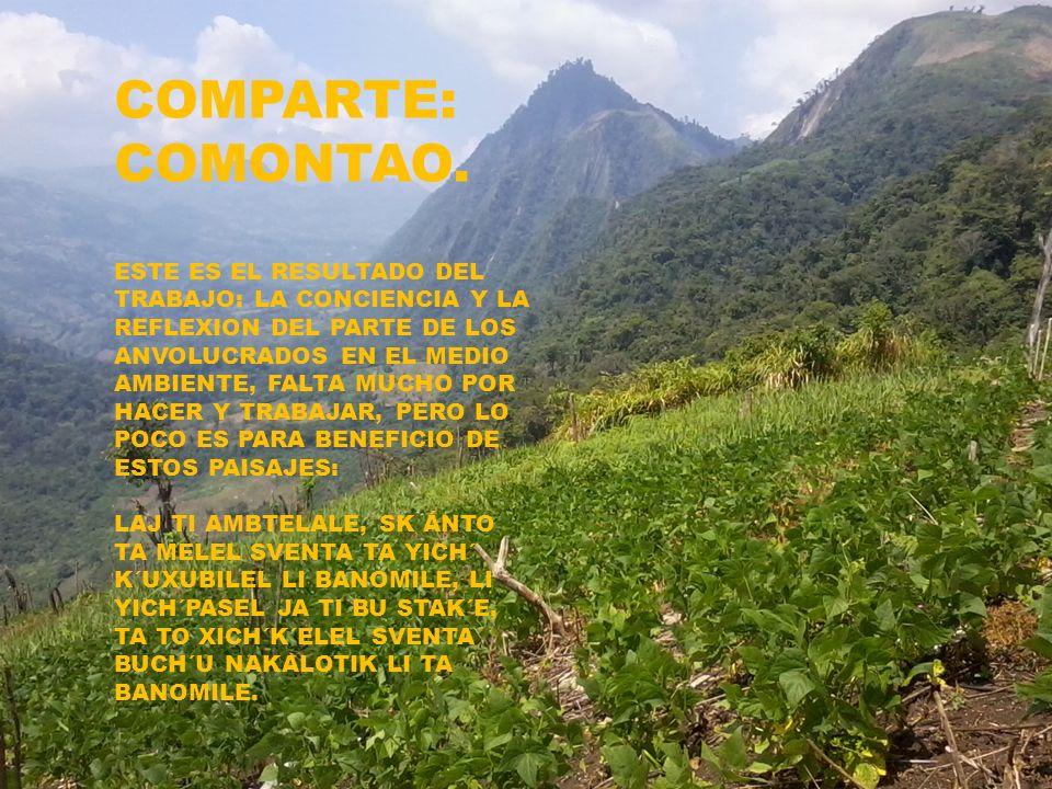 COMPARTE: COMONTAO.