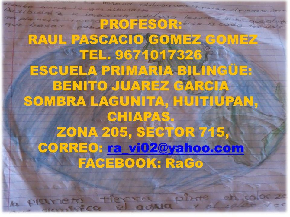 RAUL PASCACIO GOMEZ GOMEZ TEL. 9671017326