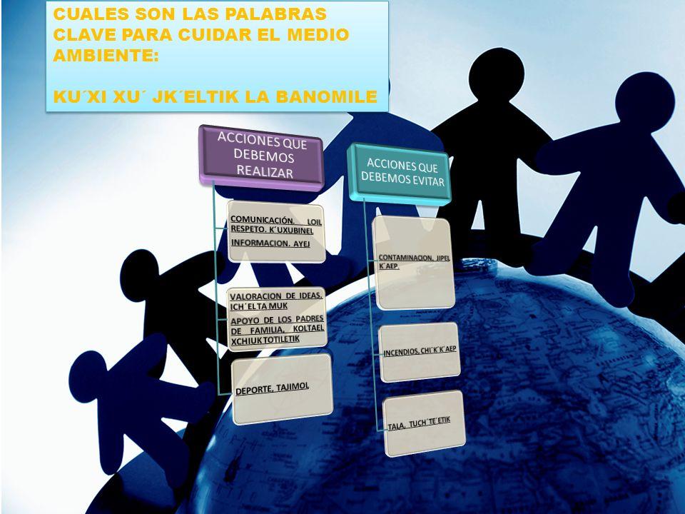 CUALES SON LAS PALABRAS CLAVE PARA CUIDAR EL MEDIO AMBIENTE: