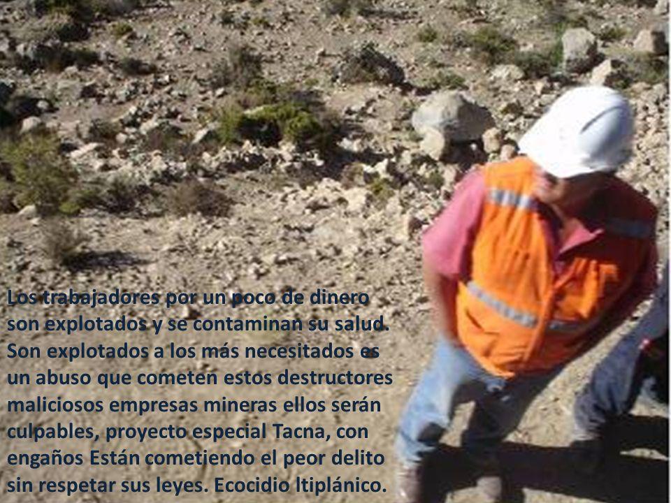 Los trabajadores por un poco de dinero son explotados y se contaminan su salud.