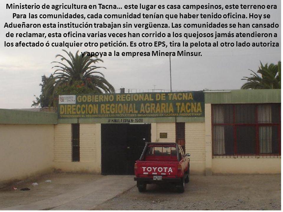 Ministerio de agricultura en Tacna… este lugar es casa campesinos, este terreno era