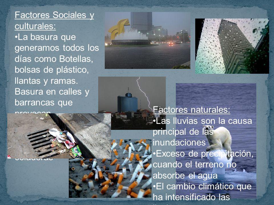 Factores Sociales y culturales: