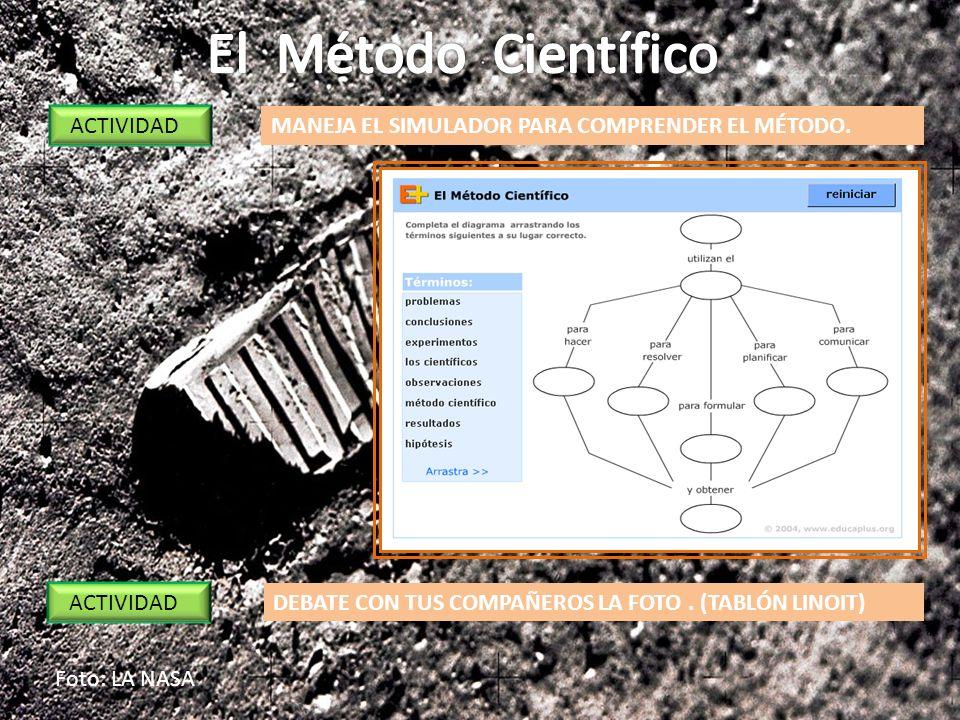 El Método Científico ACTIVIDAD