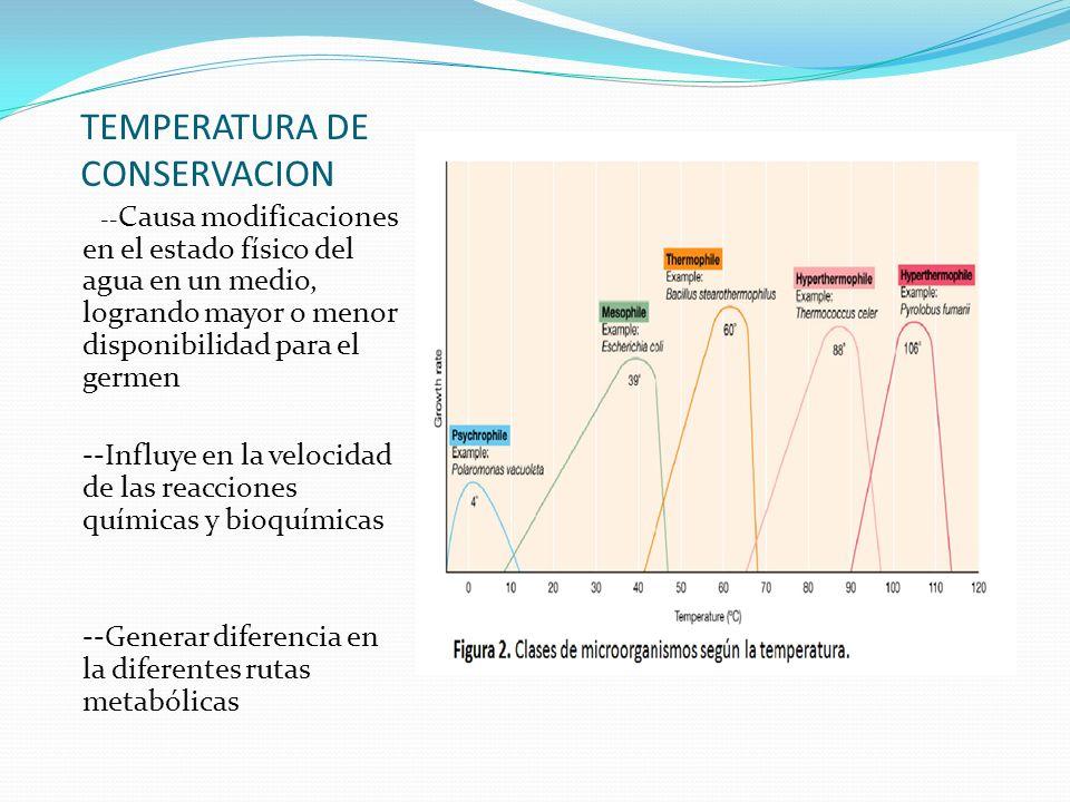 TEMPERATURA DE CONSERVACION
