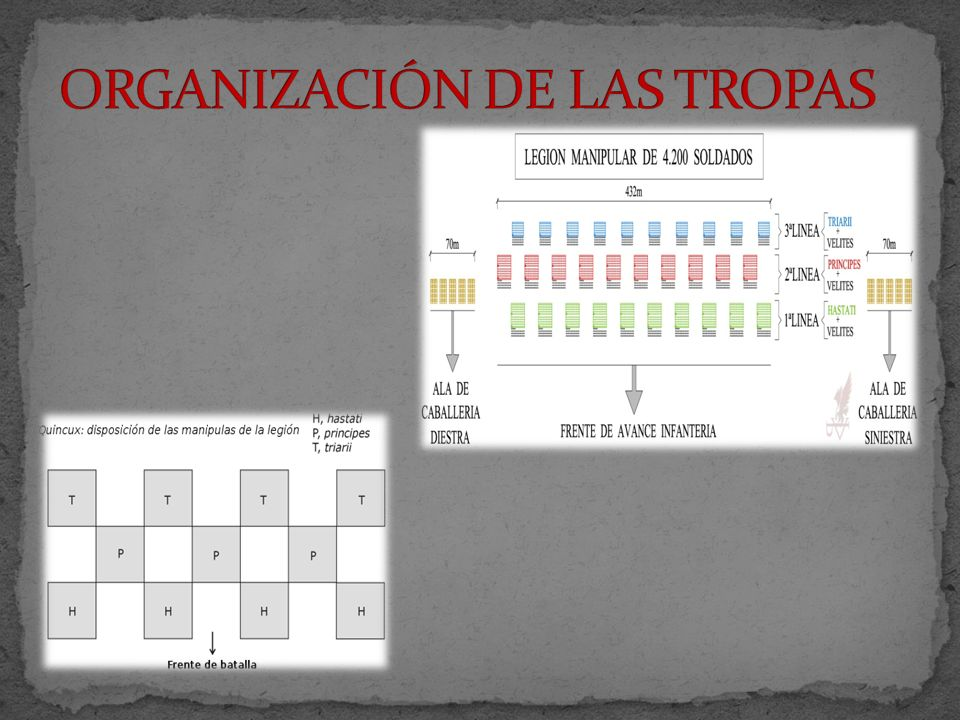 ORGANIZACIÓN DE LAS TROPAS
