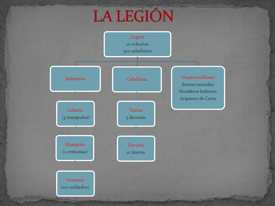 LA LEGIÓN Legión 10 cohortes 300 caballeros Infantería Cohorte