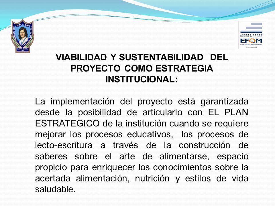 VIABILIDAD Y SUSTENTABILIDAD DEL PROYECTO COMO ESTRATEGIA INSTITUCIONAL:
