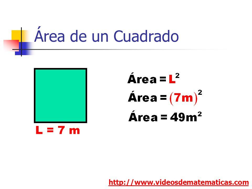 Área de un Cuadrado L = 7 m http://www.videosdematematicas.com