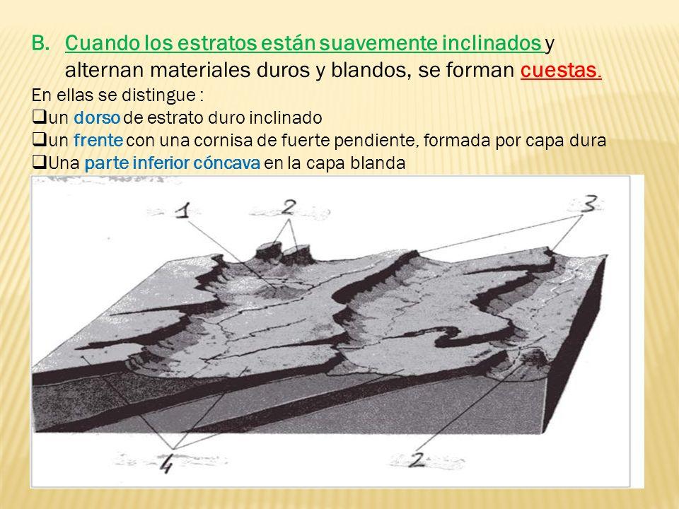 Cuando los estratos están suavemente inclinados y alternan materiales duros y blandos, se forman cuestas.