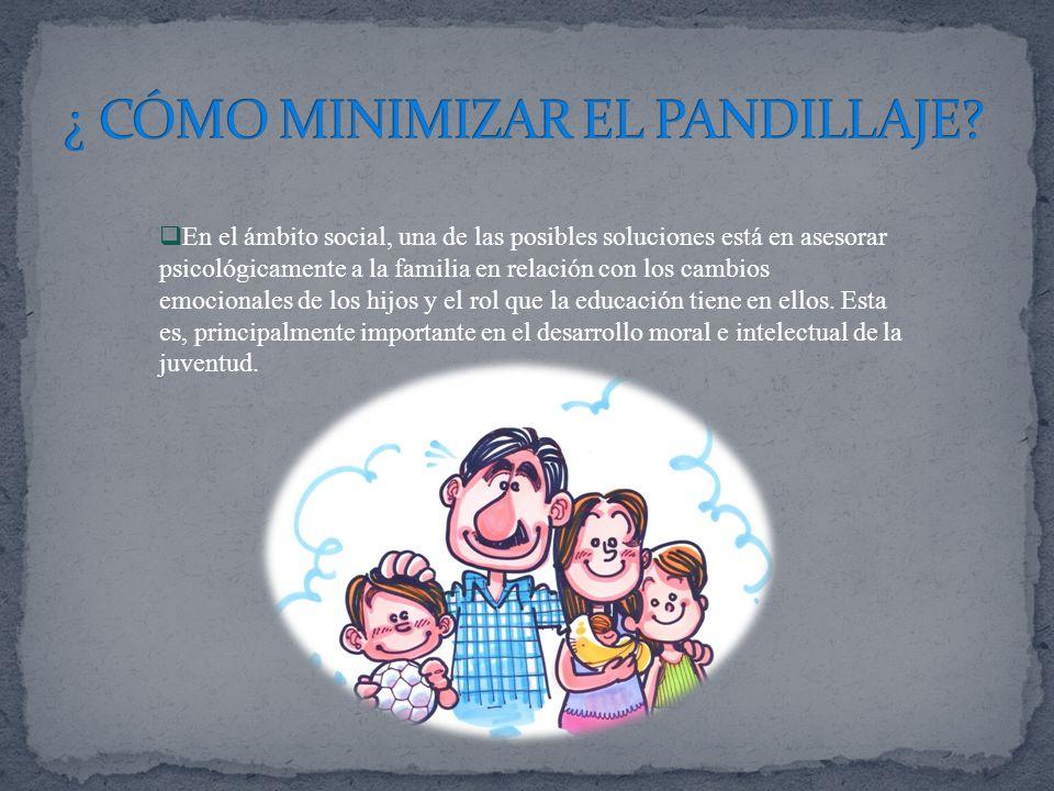 ¿ CÓMO MINIMIZAR EL PANDILLAJE