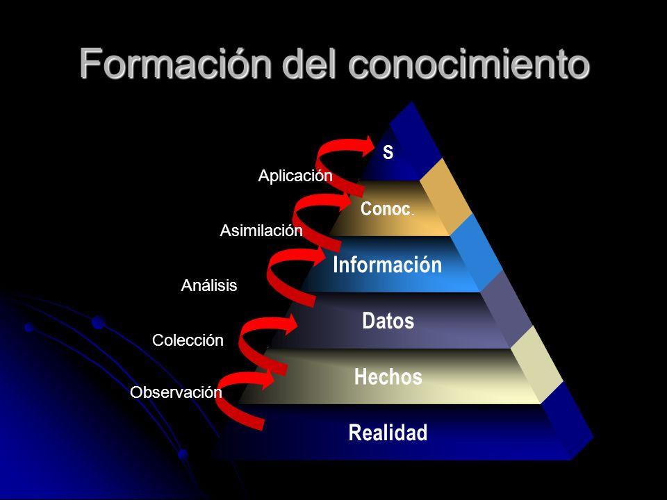 Formación del conocimiento