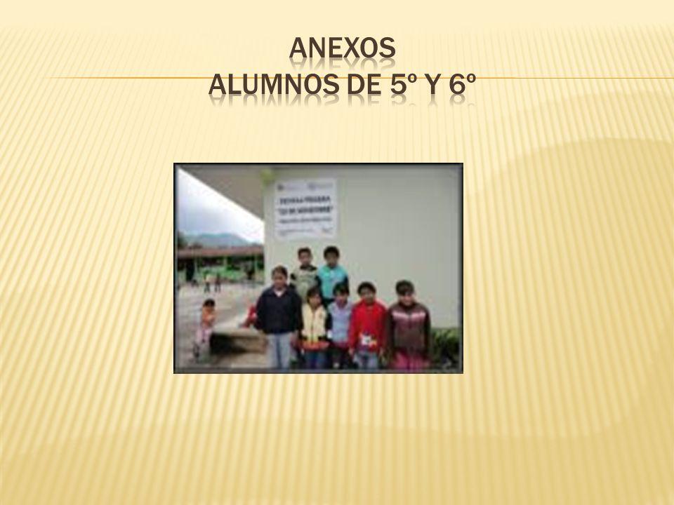 Anexos alumnos de 5º y 6º