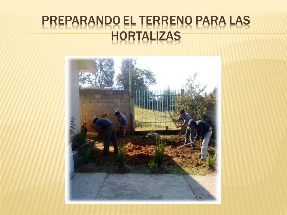 Preparando el terreno para las hortalizas