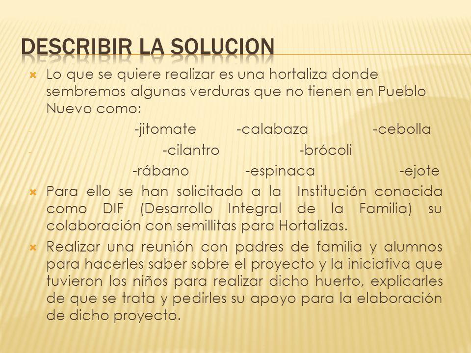 Describir la solucion Lo que se quiere realizar es una hortaliza donde sembremos algunas verduras que no tienen en Pueblo Nuevo como: