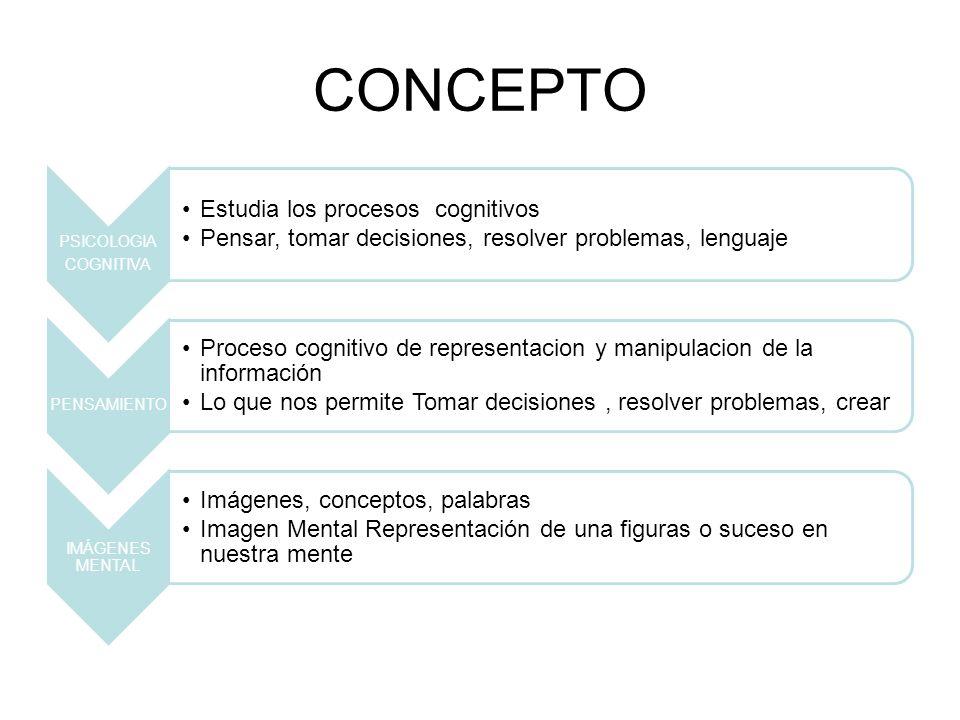 CONCEPTO COGNITIVA PSICOLOGIA Estudia los procesos cognitivos