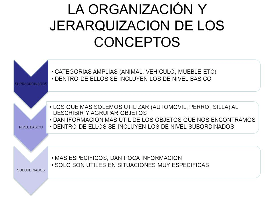 LA ORGANIZACIÓN Y JERARQUIZACION DE LOS CONCEPTOS