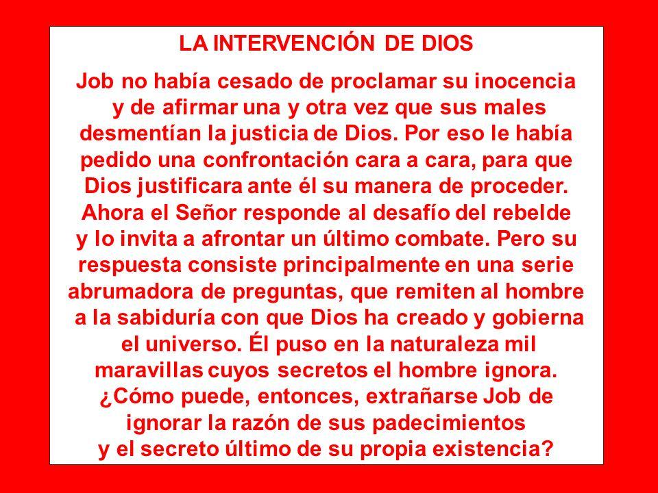 LA INTERVENCIÓN DE DIOS Job no había cesado de proclamar su inocencia