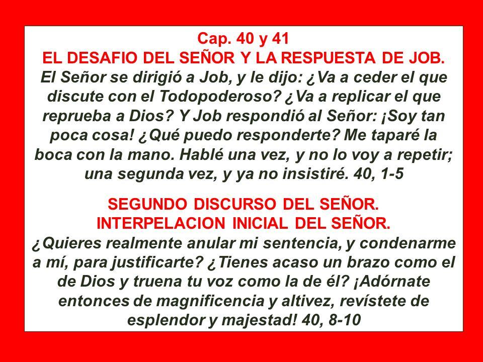 Cap. 40 y 41