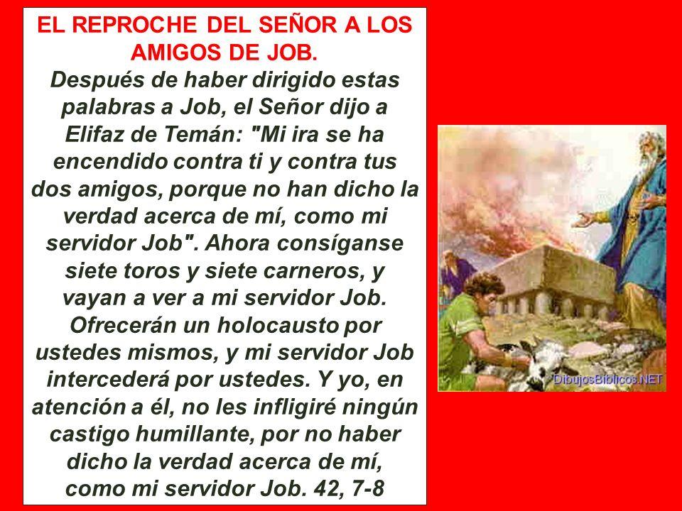 EL REPROCHE DEL SEÑOR A LOS AMIGOS DE JOB.