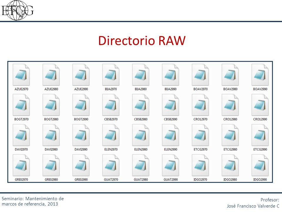 Directorio RAW Seminario: Mantenimiento de marcos de referencia, 2013
