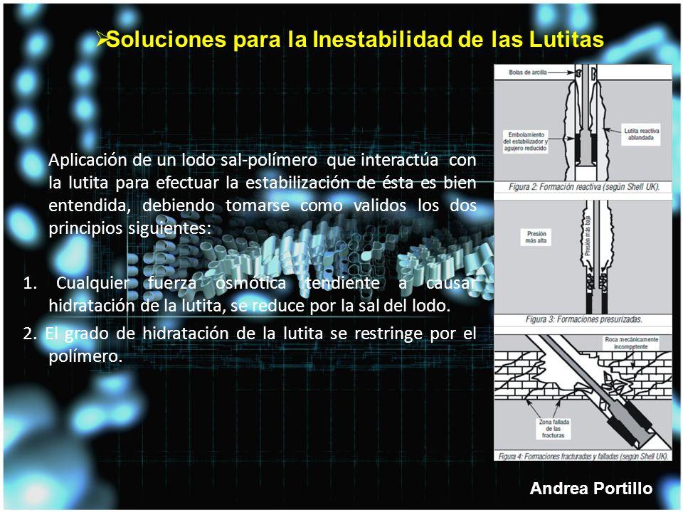 Soluciones para la Inestabilidad de las Lutitas