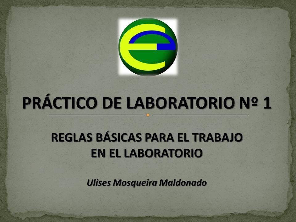 PRÁCTICO DE LABORATORIO Nº 1