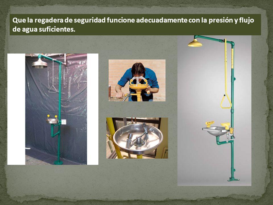 Que la regadera de seguridad funcione adecuadamente con la presión y flujo de agua suficientes.