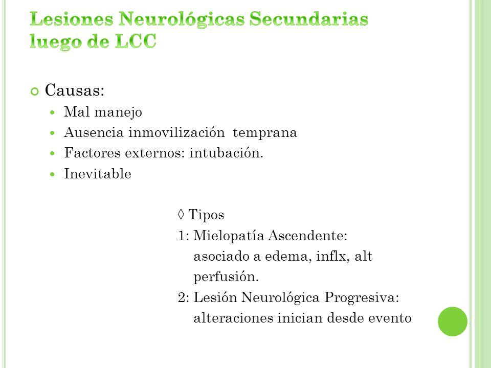 Lesiones Neurológicas Secundarias luego de LCC