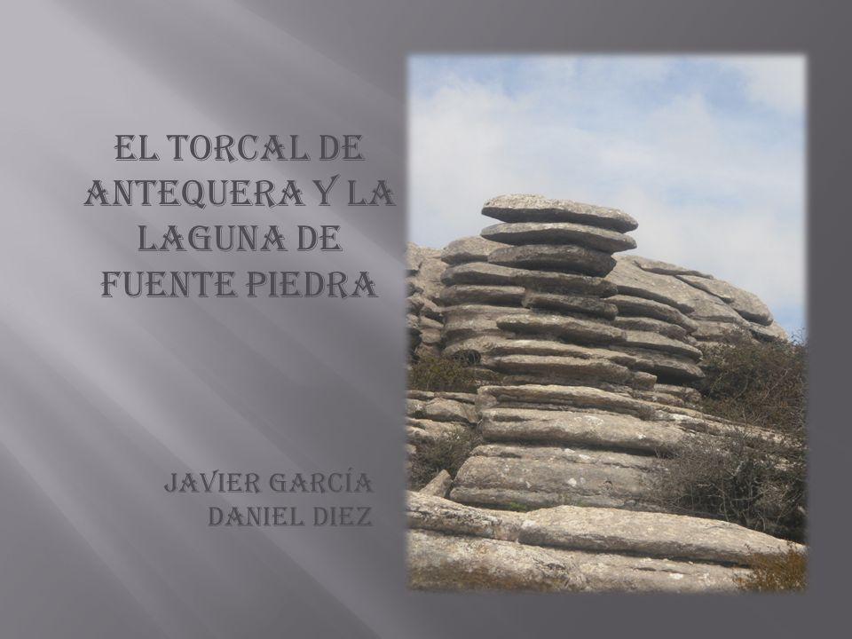 El torcal de antequera y la laguna de fuente piedra