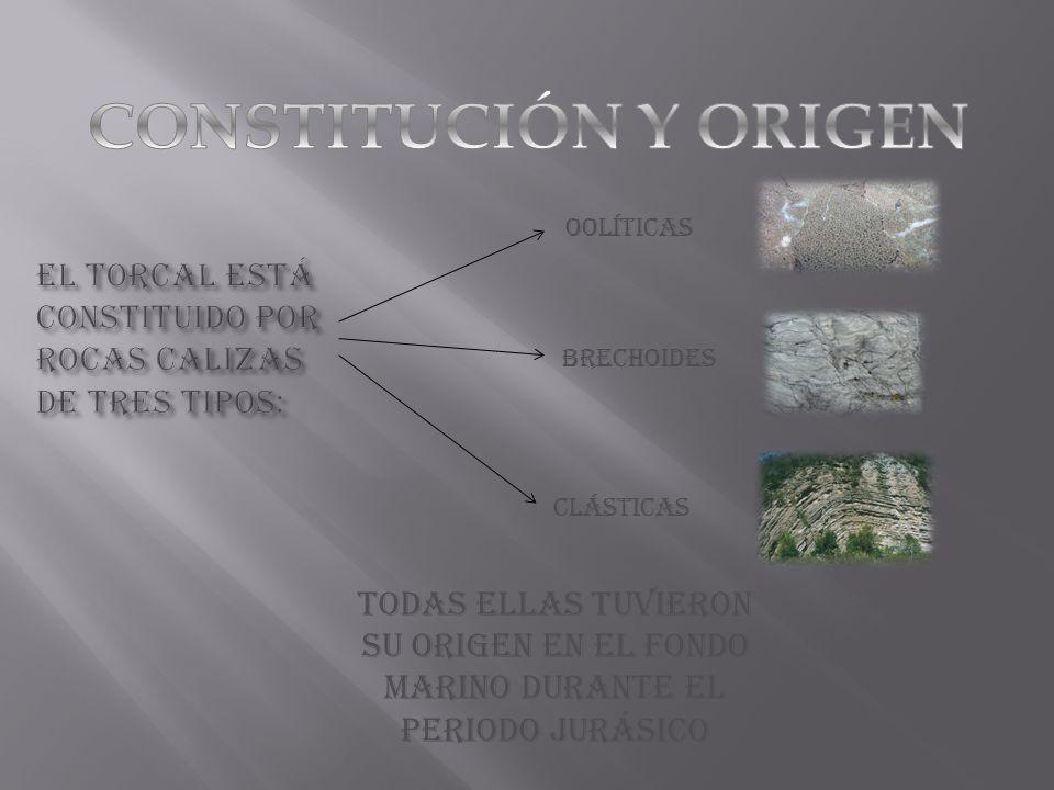 El Torcal está constituido por rocas CALIZAS de tres tipos: