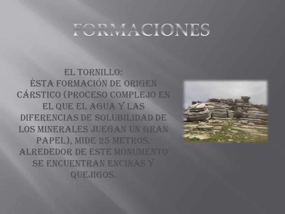 FORMACIONES El tornillo: