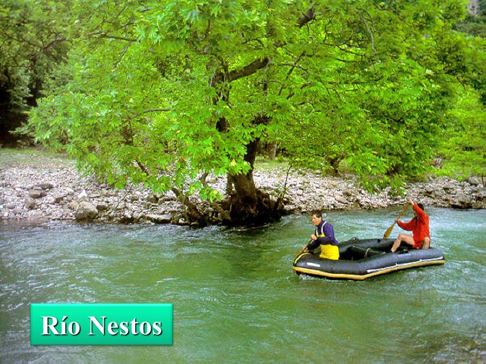 Río Nestos
